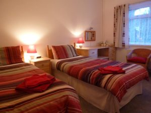 Grassholm - twin room
